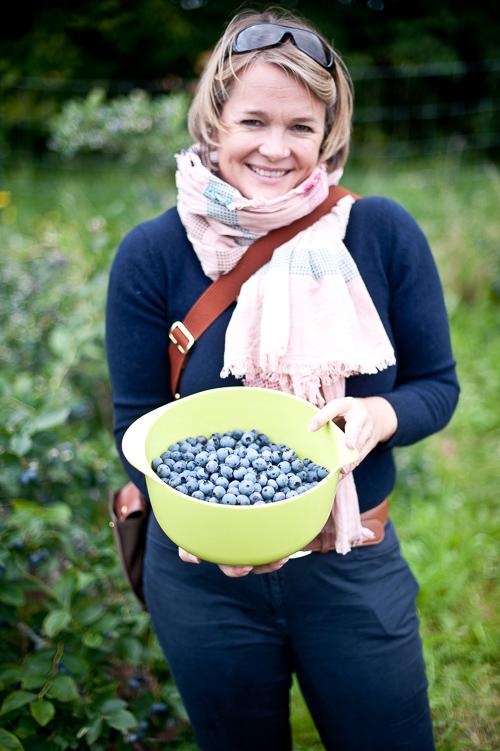 Det går relativt hurtigt at plukke blåbær