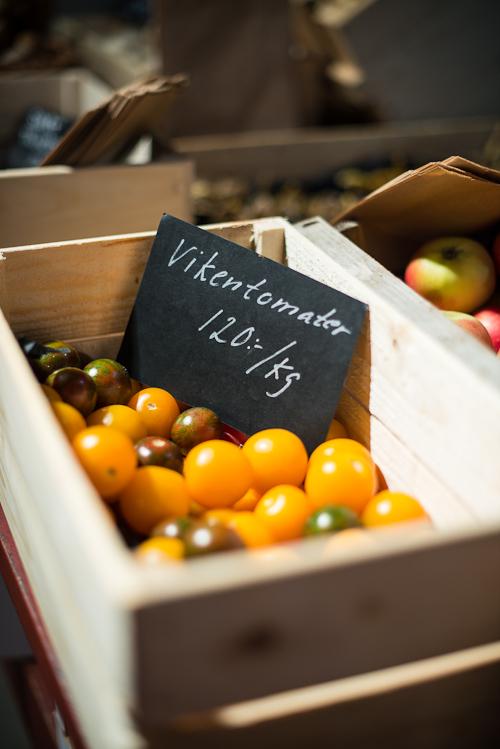 Viken tomater - næsten verdensberømte