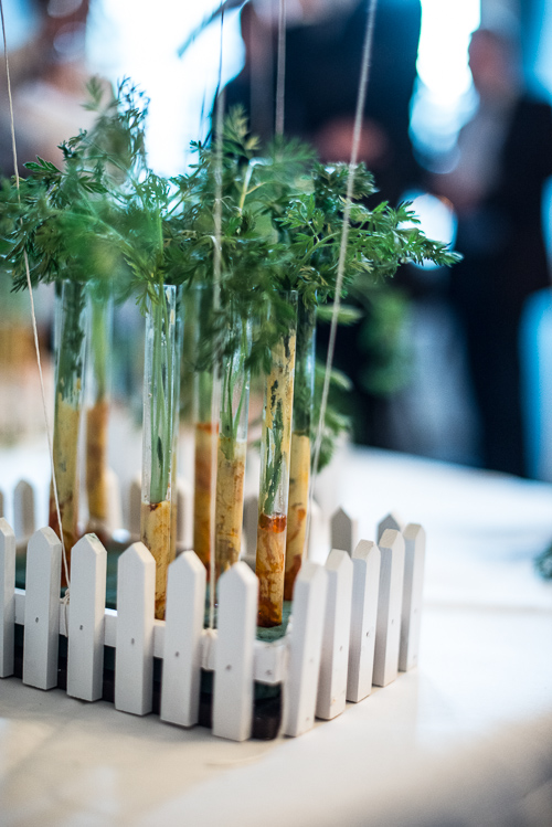 Små fine køkkenhaver med spæde gulerødder