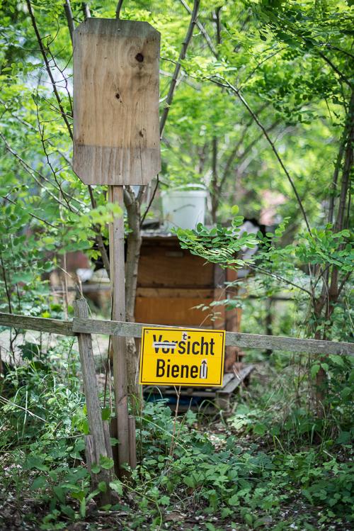 Selvfølgelig er der også bier