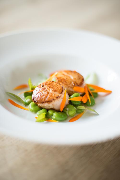 En-meget-smuk-ret-klar-til-servering