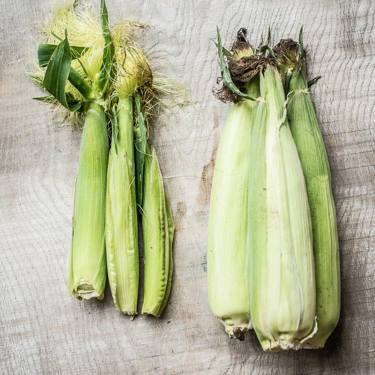 To slags majs klar til brug