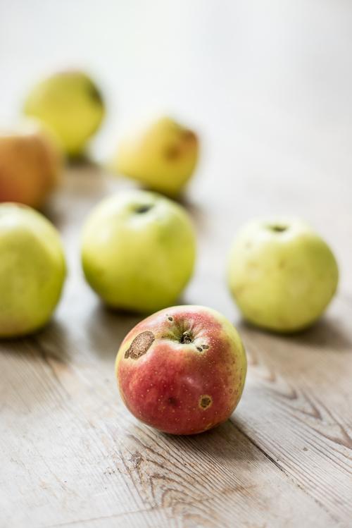 Et ikke særligt prangende æble