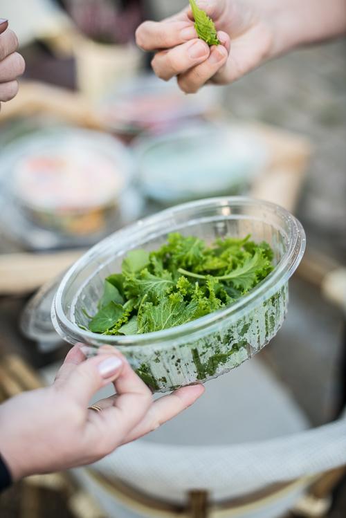 Mustard greens - lækre, spæde blade med fantastisk smag