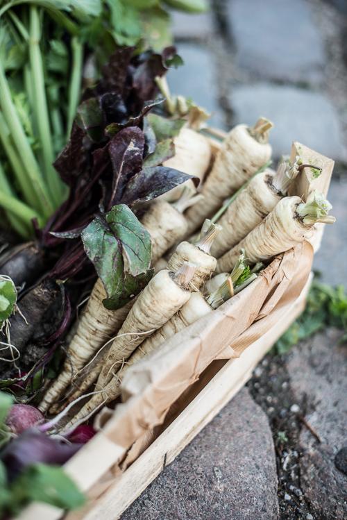 Biodynamiske grøntsager fra Lolland