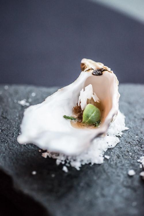 Forloren østers 1