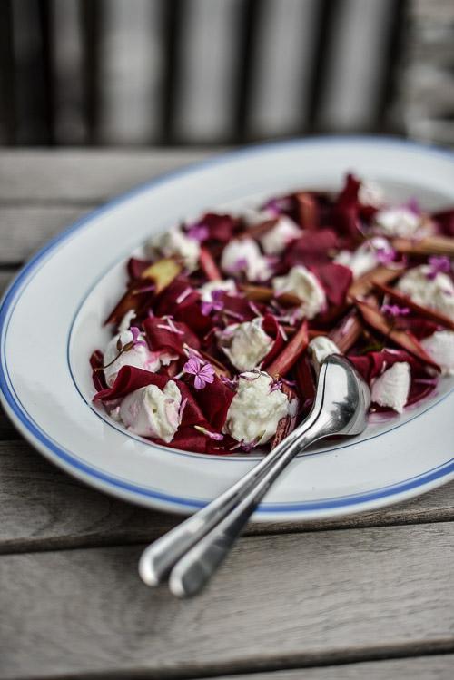 Rabarber, rødbede og mozzarella