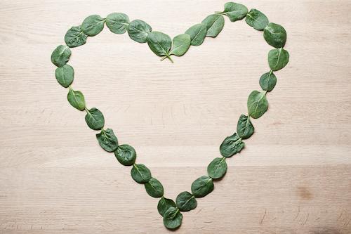 Et hjerte i spinat som hyldest til foråret